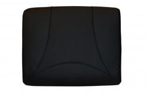 Cushion_Black color (21A)